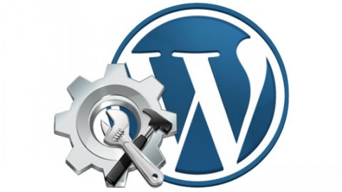Get Free WordPress Set-Up Now