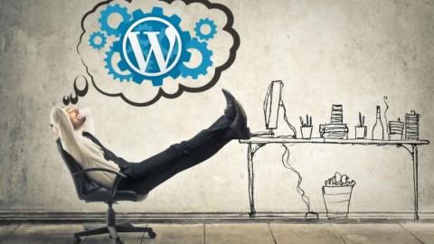 Free WordPress Set-Up Service